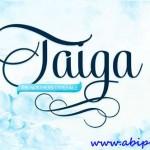 دانلود مجوعه فونت انگلیسی تایگا Exclusive Taiga Fonts