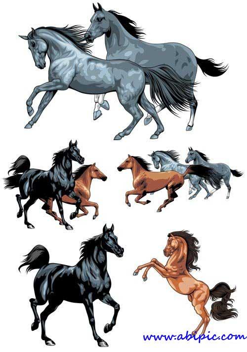 دانلود وکتور اسب در حالت های و رنگ های مختلف Horse surges Vector material