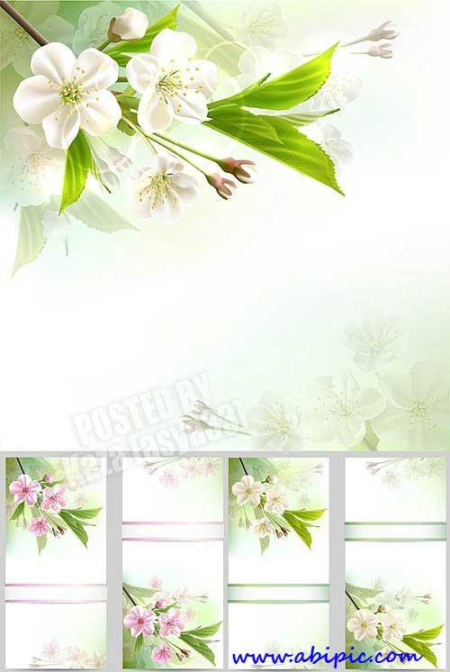 دانلود وکتور پس زمینه با طرح گل های بهاری Spring flowers Vectors