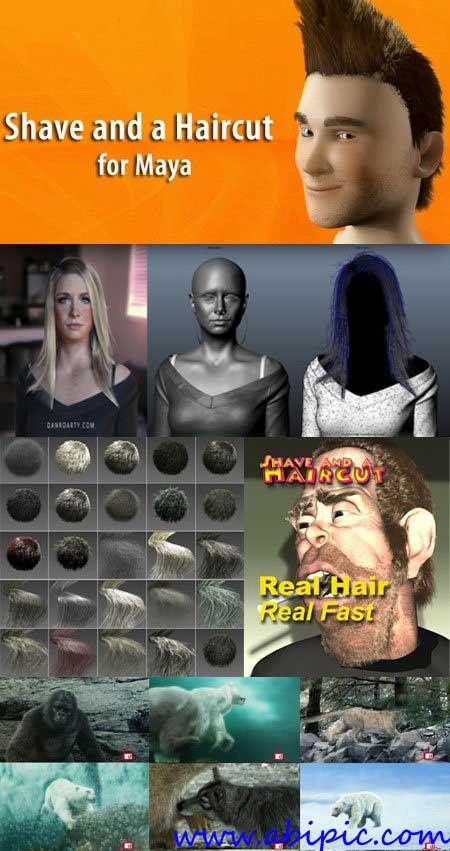 دانلود پلاگین ساخت مو در مایا Shave and a Haircut 7.0v23 Plugin for Maya