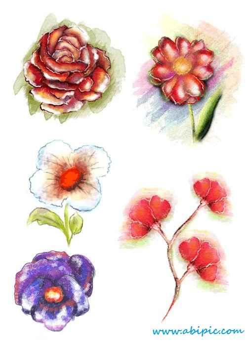 دانلود وکتور گل های تزئینی Vector Floral Ornaments