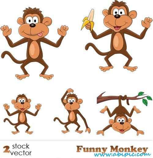 دانلود وکتور میمون بازیگوش Vectors - Funny Monkey