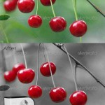 دانلود اکشن فتوشاپ حفظ رنگ انتخابی GraphicRiver Selective Color Actions