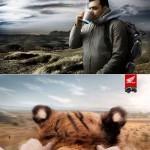 عکس های تبلیغات خلاقانه سری 8 Creative advertising Part