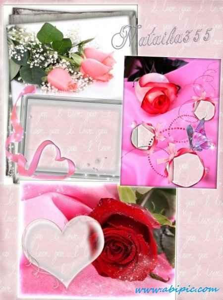 دانلود فریم قاب عکس با طرح گل رز Frames for Photoshop Rose, the queen of all colors