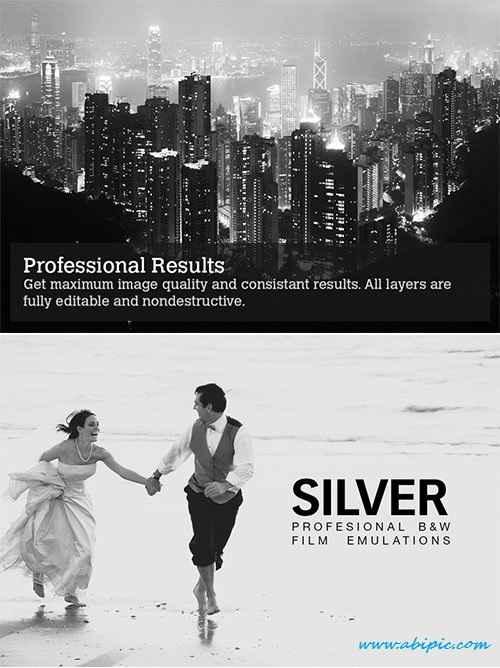 دانلود اکشن و افکت سیاه و سفید کردن عکس Silver B&W Film Emulations Actions