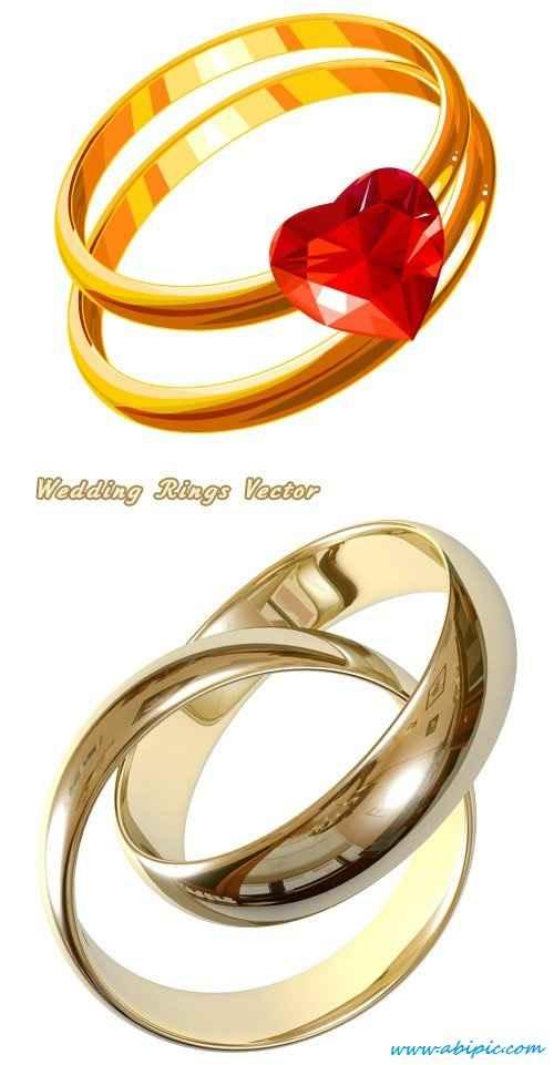 دانلود وکتور حلقه ازدواج Gold wedding rings with heart