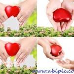 دانلود تصاویر استوک قلب در دست Heart in a hands – stock photo