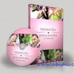 دانلود فوتیج و پک آماده فیلم عروسی Videohive Classy Wedding Pack