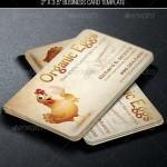 دانلود کارت ویزیت لایه باز با طرح مرغ Egg Farmers Business Card