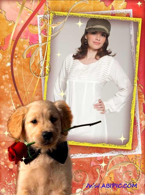 دانلود قاب عکس دیجیتال Frame for photoshop – Red dog with a rose