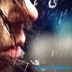 دانلود براش فتوشاپ باران Rain Shower Photoshop Brush Set