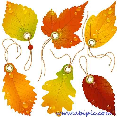 دانلود وکتور لیبل و آویزه با طرح برگ پاییزی Golden red and yellow