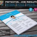 دانلود طرح ایندیزاین رزومه شماره 7 Personal Job Resume