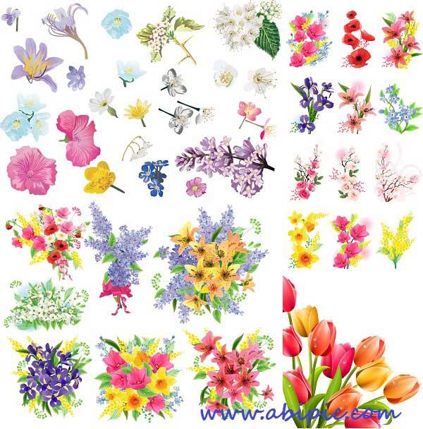 دانلود طرح وکتور انواع گل های بهاری Spring flowers - Stock Vectors