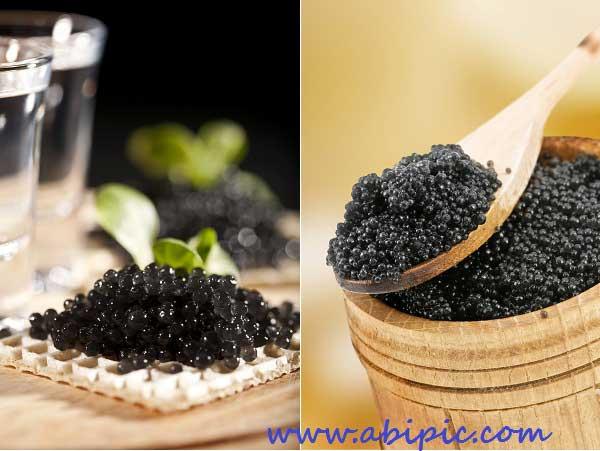 دانلود تصاویر استوک خاویار سیاه Black Caviar HQ Photo