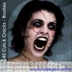 دانلود براش زخم و ترک شماره 5 Cuts and Cracks Photoshop Brushes