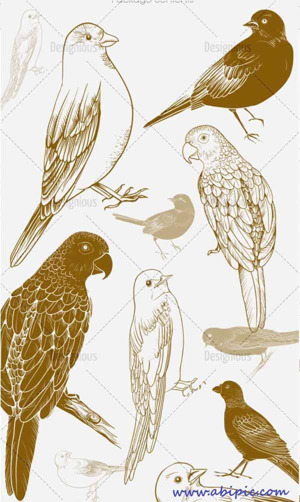 دانلود براش فتوشاپ پرنده Birds Photoshop Brushes