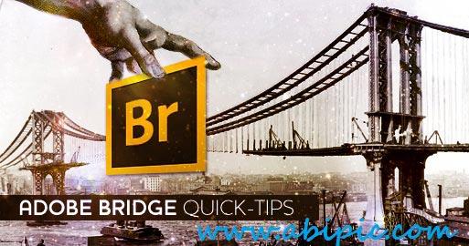 دانلود فیلم آموزش نکته های کاربردی در نرم افزار Adobe Bridge image processor