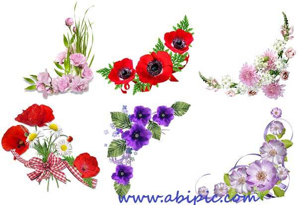 دانلود تصاویر پس زمینه شفاف کادر و حاشیه گل سری 2 Floral corners for Photoshop