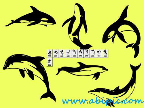 دانلود براش فتوشاپ دلفین Dolphin Photoshop Brush