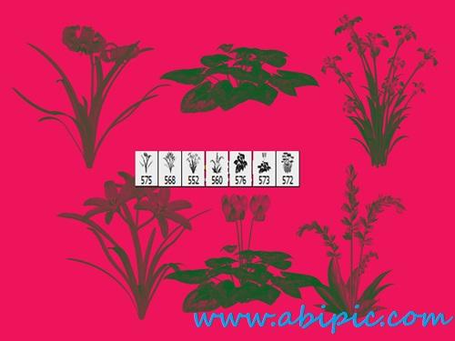 دانلود براش گل و بوته شماره 7 Floral Photoshop Brushes