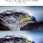 دانلود اکشن تبدیل عکس به نقاشی ایمپستو Impasto Photoshop Action