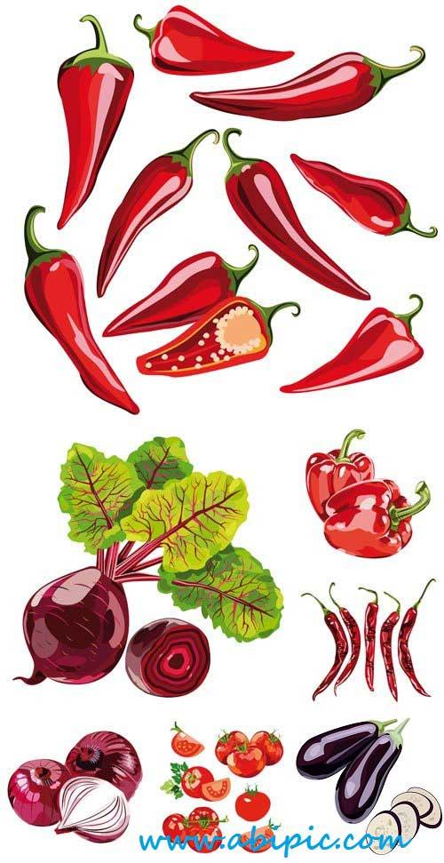 دانلود وکتور سبزیجات Vector vegetables