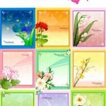 دانلود مجموعه کادر و قاب عکس های زیبا برای عکس با طرح گل