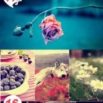 دانلود مجوعه اکشن های تغییر رنگ فتوشاپ سری جدید Photoshop Actions Pack
