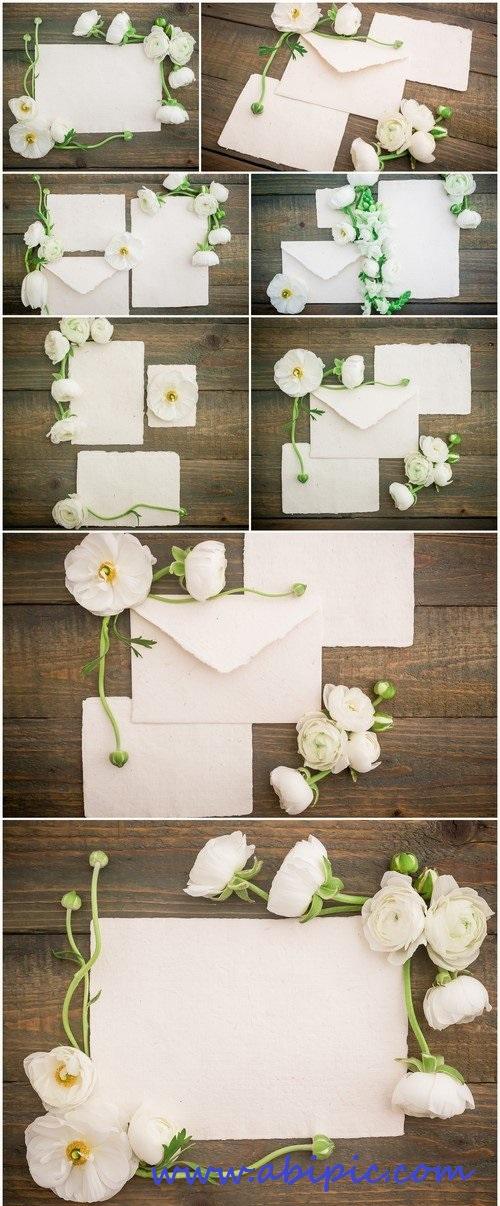دانلود عکس استوک و پس زمینه گل نامه و پس زمینه چوبی سری 2 Flowers wooden Stock Photo